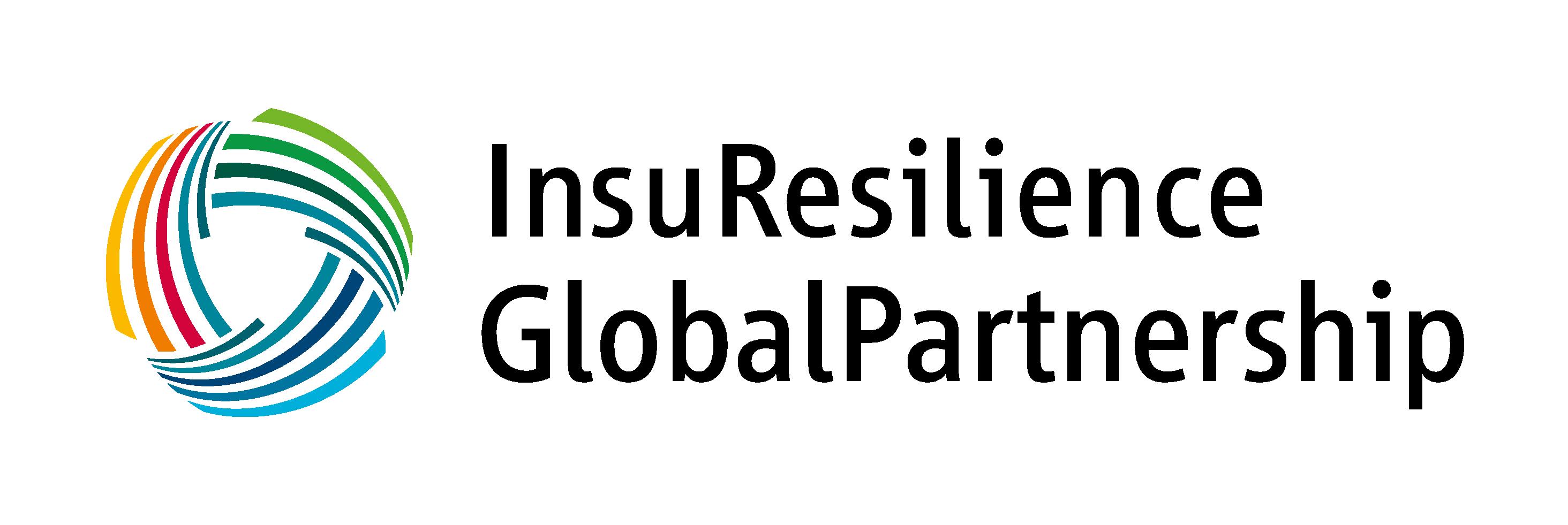 Logo der Organisation Insuresilience